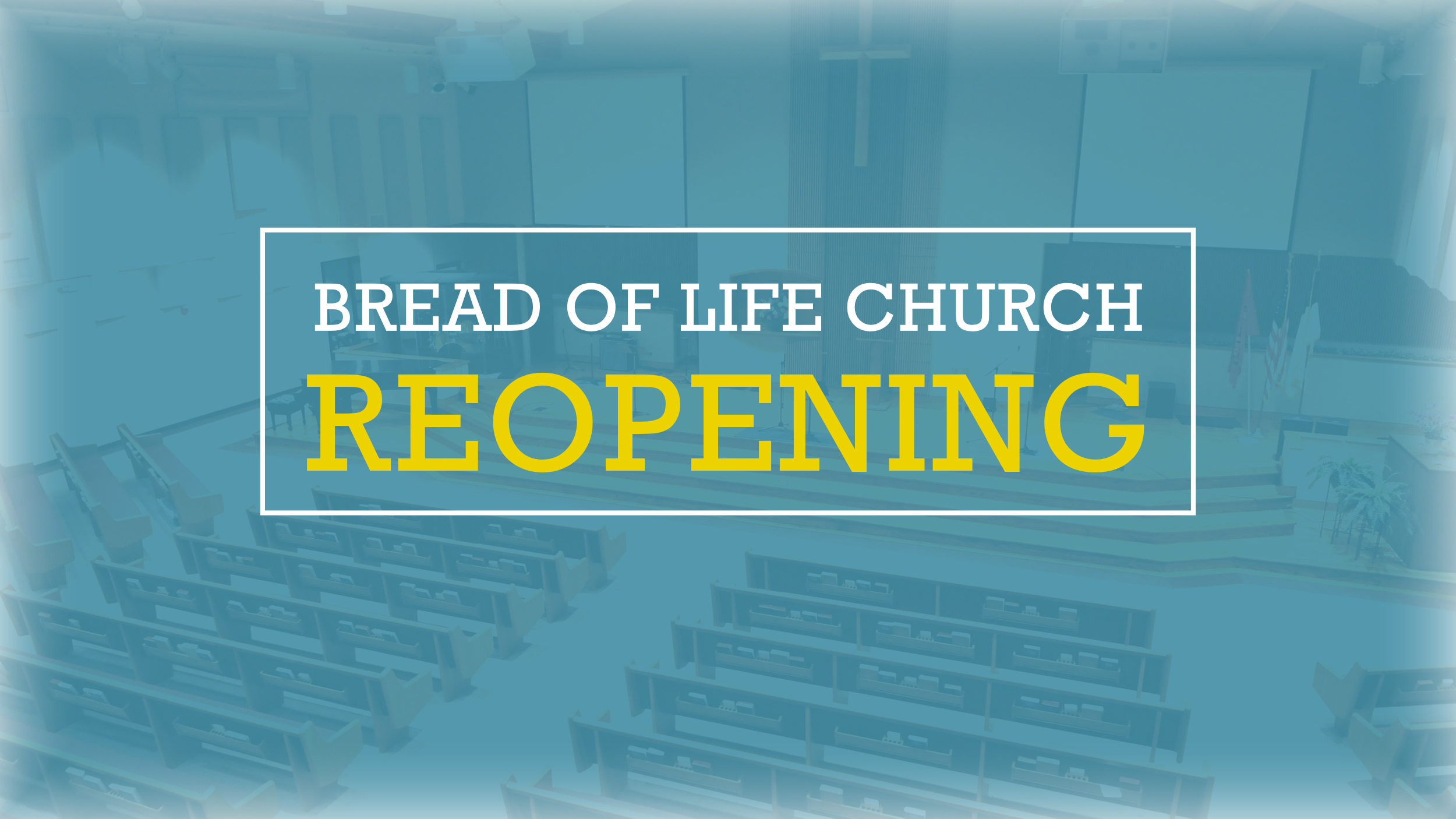 Read more about the article Church Ministry Update – Reopening